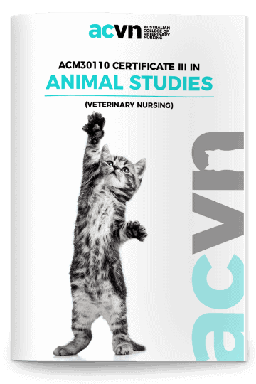 ACM30110 Certificate III in Animal Studies (Veterinary Nursing) Brochure Cover