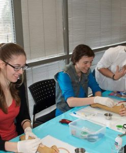 Veterinary Nursing Workshops
