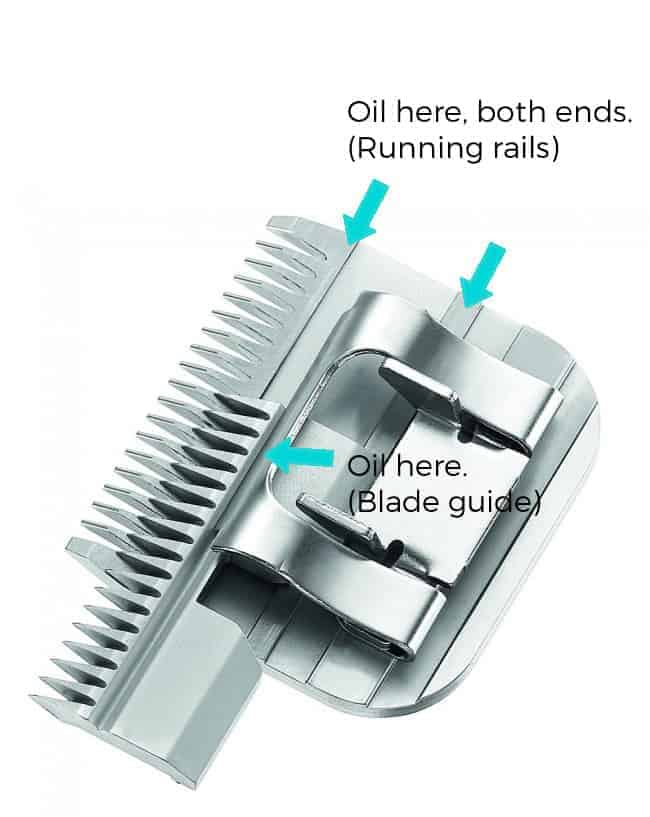 clipper blade oiling points